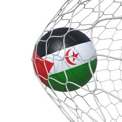 Sahrawi Arab Democratic Republic flag soccer ball inside the net, in a net.