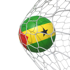 Sao Tome and Principe flag soccer ball inside the net, in a net.