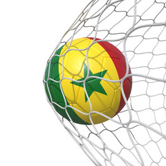 Senegal Senegalese flag soccer ball inside the net, in a net.