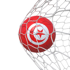 Tunis Tunisia Tunisian flag soccer ball inside the net, in a net.
