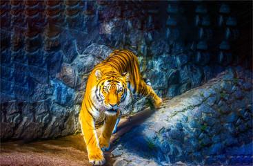 Tiger hunting scene