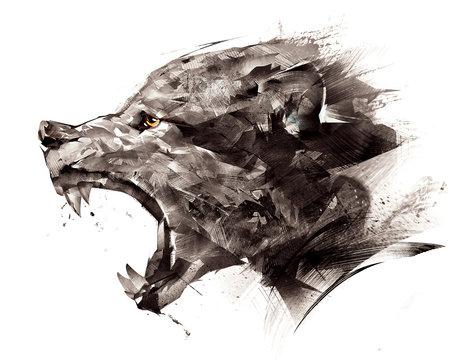 sketch wolf wolf sideways on a white background