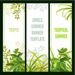 Tropical plants. Vertical banner set.