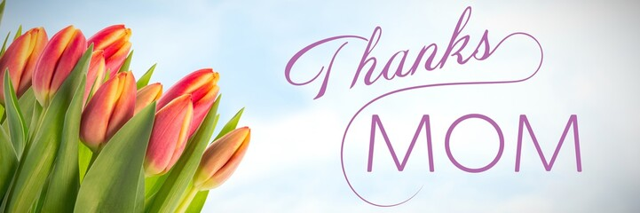 Composite image of thanks mom