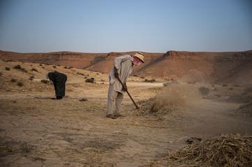 Berberian farmers