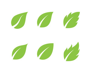 Tree Leaf Vector icon template