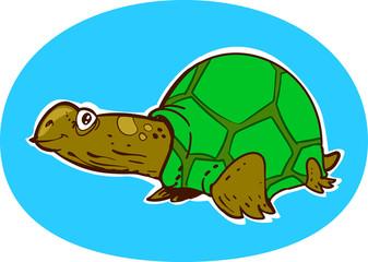 smiling turtle cartoon style illustration