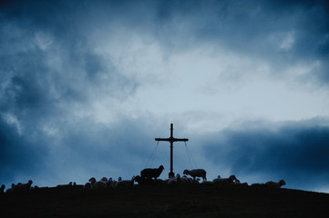 A silhuette of sheep on a cross at dawn.