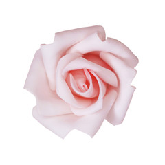 stock-photo-rose-flower-pink-color-isolated-on-the-white-background