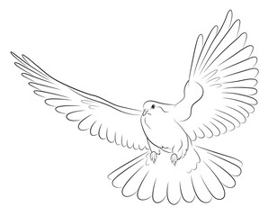 Silhouette of white dove - the symbol of peace.