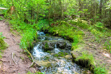 "Forest stream ""Gremuchiy ruchey"" - Natural landmark in Zhukovsky district, Kaluzhskoy region, Russia"