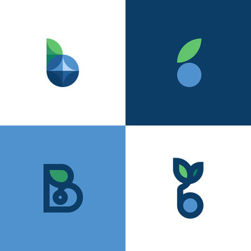 Set of elegant icons or logo templates of letter b and blue berry with leaf