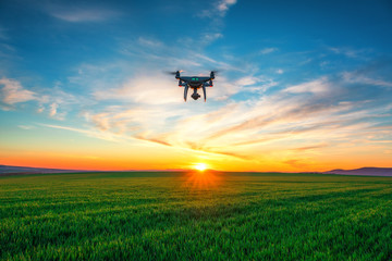 Flying drone against sunset and green wheat field Wall mural