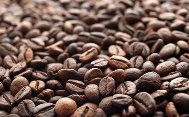 Coffee beans as background, closeup