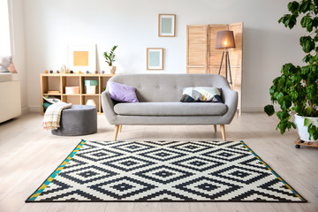 Modern living room interior with stylish sofa and carpet