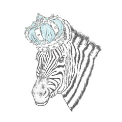 A zebra in the crown. Vector illustration.