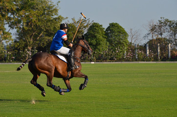player riding horse on the field in horse polo match tournament.