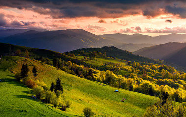 gorgeous sunset over Carpathian mountains. beautiful countryside with forested rolling hills and grassy rural fields. spectacular reddish cloudy sky