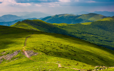 path through grassy meadow on hillside. beautiful summer landscape of great Carpathian water dividing ridge. Location TransCarpathia, Ukraine