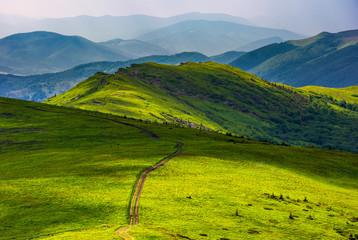 path through grassy meadow on hillside. beautiful summer landscape of great Carpathian water dividing ridge. Location TransCarpathia, Ukraine