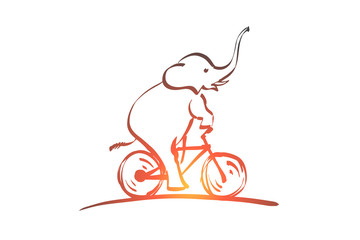Hand drawn elephant riding bicycle