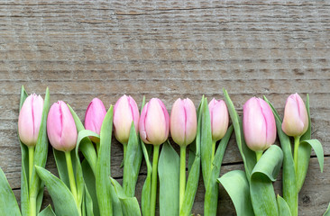Top view of pink tulips on a wooden background