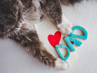 Lovely cat's paws, greeting card with painted, red heart, word DAD on white, isolated background. Congratulation to the father. Preparation for Father's Day