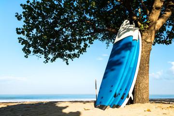 Surfboard leaning tree on empty beach. Kuta Beach, Bali