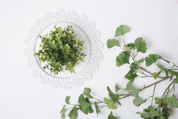 Serving Tray with Plant and Leaves Flat Lay Top View