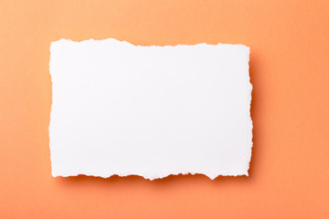 piece of white paper with torn edges on a colored background with a place for text
