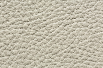 Contrast uneven leather texture in light colour.