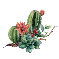 Watercolor cactus bouquet. Hand painted cereus with red flower, green succulent, berries and treebranch with leaves isolated on white background. Illustration for design, print, fabric or background.