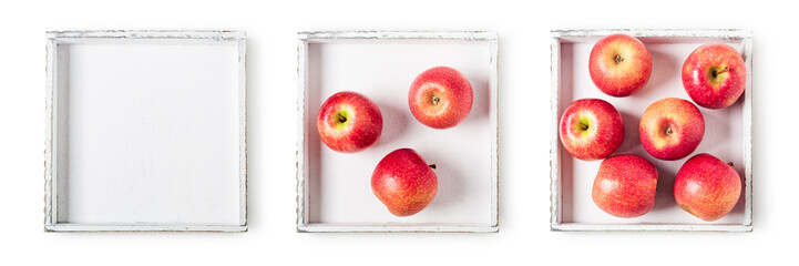 Apples on tray collection