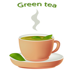 Green tea with herbs. Cup of hot tea isolated on white background. Green tea in a porcelain cup. Vector illustration.