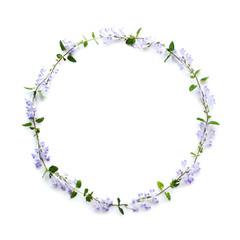 タツミナソウの花輪