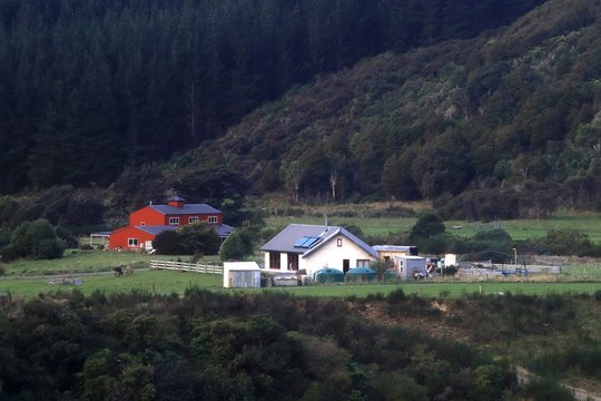Modern cottages in the forest