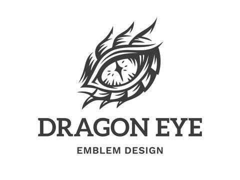 Vector eye of a dragon illustration, logotype, print, emblem design on a white background.