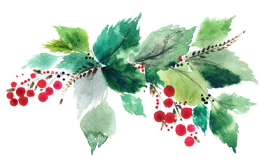 Holly berry leaves and berries