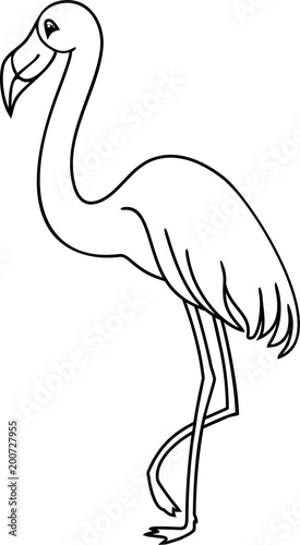 Flamingo Coloring Page Stock Image And Royalty Free Vector Files On