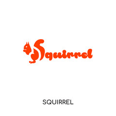 squirrel logo isolated on white background for your web, mobile and app design