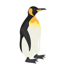 Cartoon penguin icon on white background.