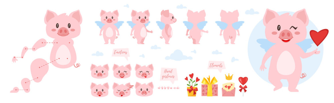pig character for animation