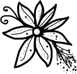 Picture with the painted flower in a black - white colors
