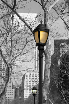 Monochrome of Battery Park and Street Lamps in Colour, New York