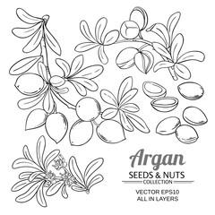 argan branches vector set