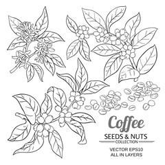 coffee vector set