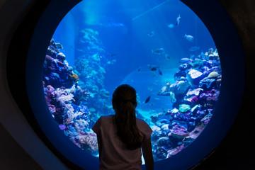 At Coral World Underwater Observatory in Eilat