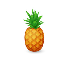 Pineapple isolated on white background. Vector tropical fruit.