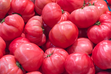 A pile of pink tomatoes as background, texture