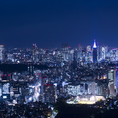 Tokyo Night View for SNS